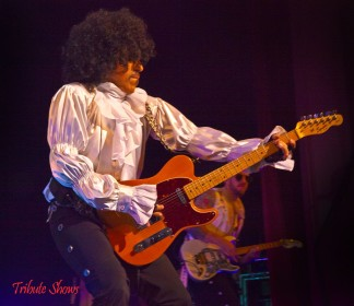 Prince Tribute Act